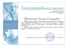 Достижения ДШИ 2014